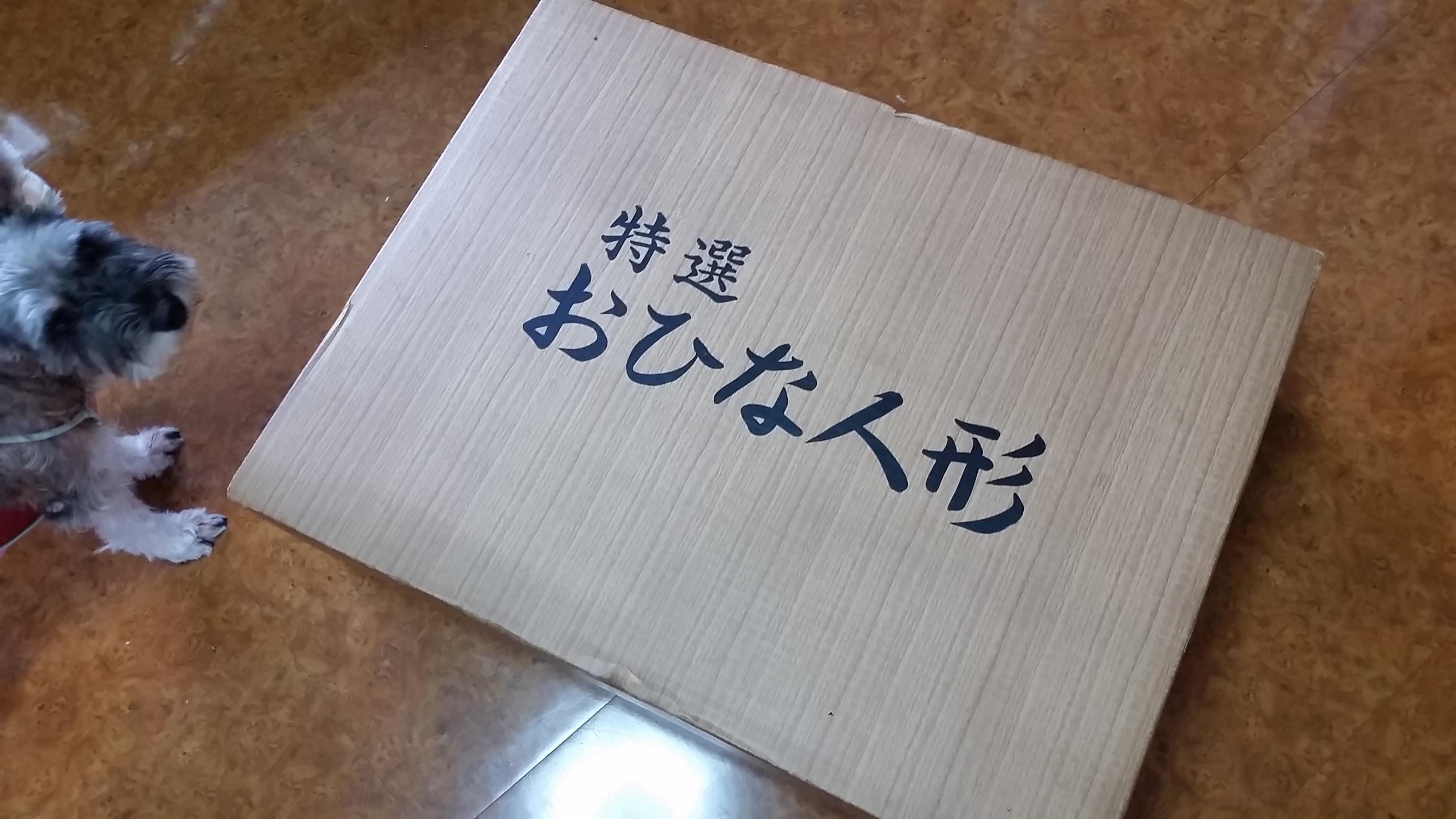 20150717_112137